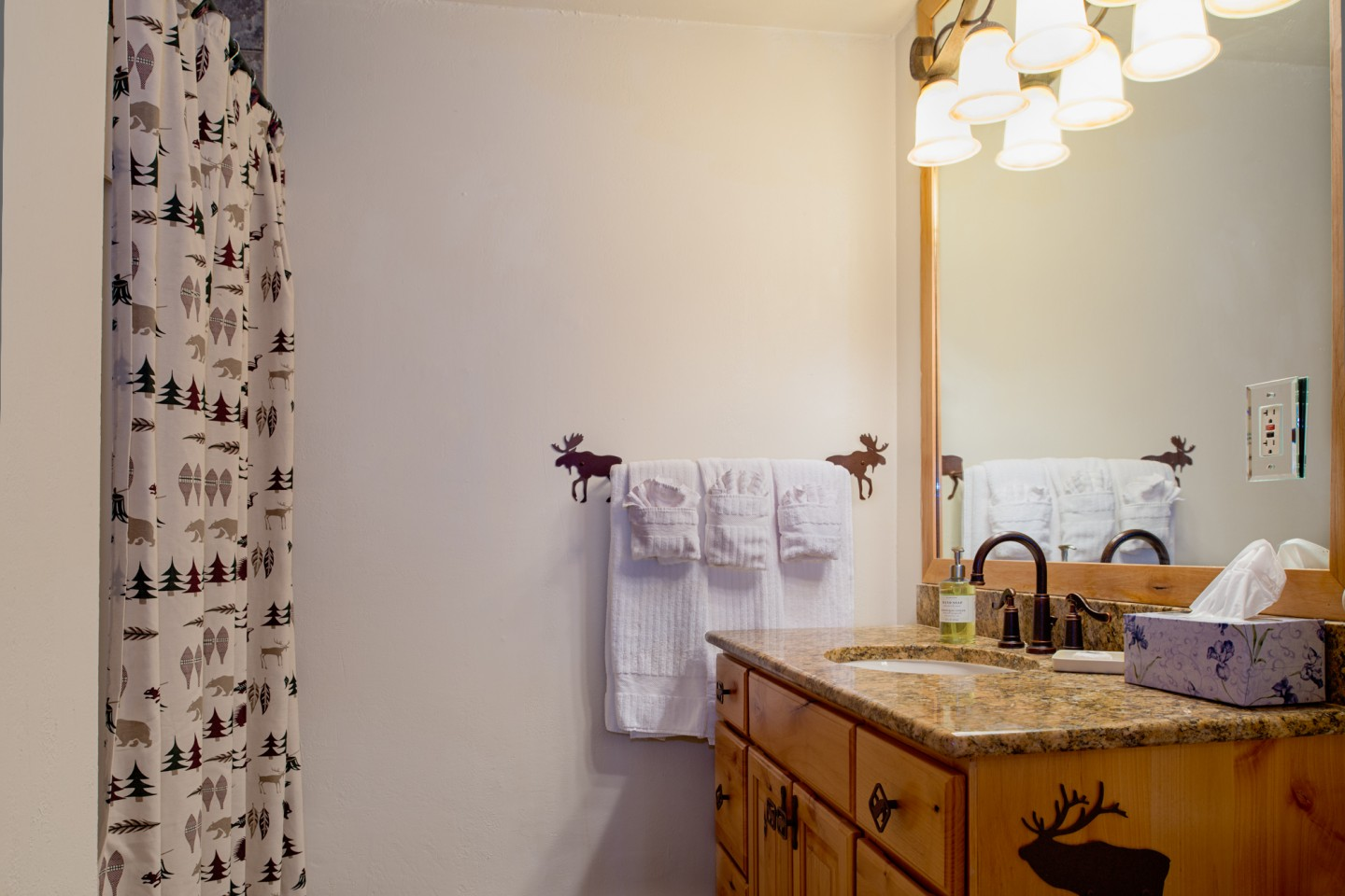 Downstairs bathroom — hit the shower straight from the hot tub